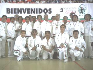 20070623082750-cachibol-3.jpg
