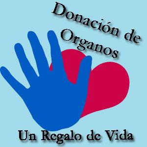 20080730105041-donacion-de-organos.jpg