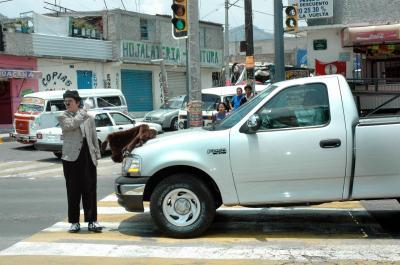 """El mimo """"Vale"""" y su perro """"oso"""" promueven la cultura vial"""
