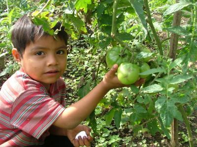 20110915160510-agricultura.jpg